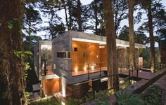 This gorgeous home in Guatemala has giant trees growing through its living room!