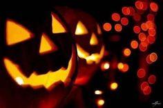 Jack O Lantern  halloween pumpkins halloween pictures halloween images jack o lantern halloween photos