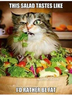 I really like salad! But this is funny!