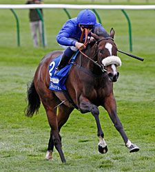 CERTIFY Shadwell Fillies Mile-Eng  8f turf (2yr)