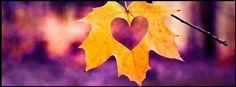 Leaf, heart, yellow, purple, simple facebook timeline cover photo Fall Cover Photos, Thanksgiving Facebook Covers, Facebook Cover Photos Vintage, Halloween Facebook Cover, Cover Pics For Facebook, Timeline Cover Photos, Facebook Timeline Covers, Winter Photos, Vintage Photos