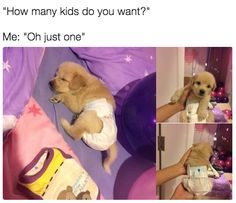You actually prefer animals sometimes.   21 Things You'll Understand If You Love People But Also Hate Them