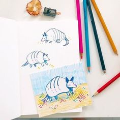 Never drawn an armadillo before. No one told me that I was missing out all this time? Creative Artwork, Cool Artwork, Copic, Composition Art, Simple Art, Easy Art, Traditional Paintings, Art Model, Art Club