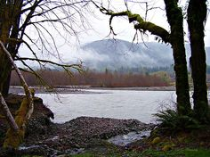 Hoh River - Available in canvas print, framed print, art print, acrylic print, metal print, greeting card, iPhone case and Galaxy case