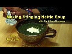 Making Stinging Nettle Soup w/ The Urban-Aboriginal Aboriginal Food, Urban