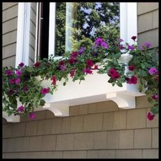 You can dramatically enhance your home's appeal by installing flower boxes or window boxes and planting them with colorful seasonal flowers that complement your home's exterior.