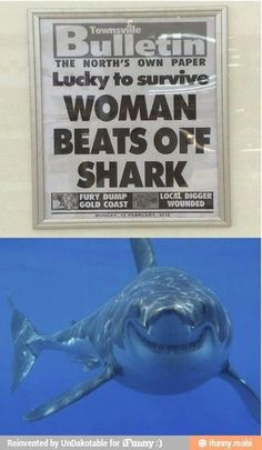 Shark knew what he was doing all along..