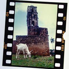 #cuba #karibik #caribbean #trinidad #diapositiv #perforation #kodak Trinidad, Cuba, Mount Rushmore, Caribbean, Memories, Mountains, Nature, Travel, Voyage