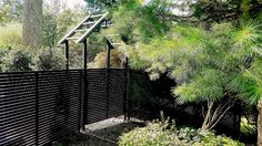 Custom Horizontal Black Wrought Iron Fencing and Pergola Wrought Iron Fences, Fencing, Pergola, Outdoor Structures, Places, Picket Fences, Arbors, Lugares