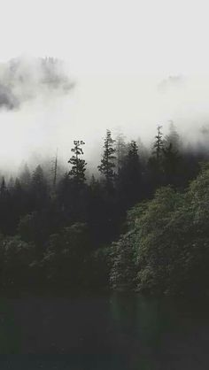 Imagen De Forest Wallpaper And Nature Clouds Iphone White For