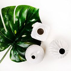 geometrische Formen und minimalistisches Design treffen auf glänzend weiße Keramik - das ist unsere neue Vasen Serie Maché! Setzen Sie mit dieser Dekovase Ihre Blumen in Szene oder arrangieren Sie die Blumenvasen einfach als Deko Objekte auf Ihrem Esstisch oder auf dem Sideboard. Die Vasen wirken auch ohne Blumen und werden für staunende Blicke sorgen. In unserem Shop finden Sie verschiedene Vasen der Serie Maché. Alle Modelle sind aufeinander abgestimmt und ergänzen sich perfekt. Runde und…