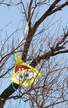 """It was a funny kite already, with the big eyes and toothy smile. Being stuck upside down in a tree seems to add to the chuckle factor here! I wonder if this kids' kite was ever rescued... T.P. (my-best-kite.com) """"Kite mishap"""" Cropped from a photo by Katie Harbath on Flkr."""