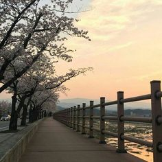 Aesthetic Japan, Korean Aesthetic, City Aesthetic, Travel Aesthetic, Aesthetic Photo, Aesthetic Pictures, Japanese Aesthetic, Nature Aesthetic, Clipart Images