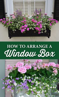 French Home Decor How to Arrange a Window Box - Crocker Nurseries.French Home Decor How to Arrange a Window Box - Crocker Nurseries Window Box Plants, Window Box Flowers, Window Planter Boxes, Balcony Flowers, Planter Ideas, Railing Planter Boxes, Container Flowers, Container Plants, Container Gardening