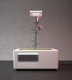 A simple solution to the lack of natural sunlight. The LED lights up as the user's alarm activates and is turned off when the user goes to bed. So the user and the plants cycles are interlinked.
