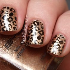 Shiny copper gold with black leopard