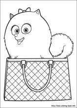 The secret life of Pets coloring pages on Coloring-Book.info
