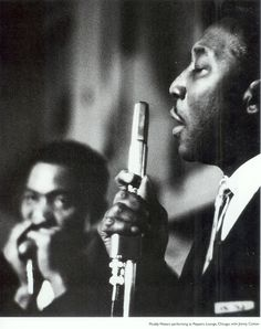 muddy-waters & james cotton