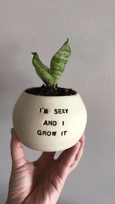 I'm a one-woman ceramic business that focusses on handmade planters that feature witty and sassy sayings. I call them Pun Pots. Painted Plant Pots, Painted Flower Pots, Painted Pebbles, Cerámica Ideas, Plants Quotes, Quotes About Plants, Ceramic Planters, Ceramic Tile Crafts, Clay Planter