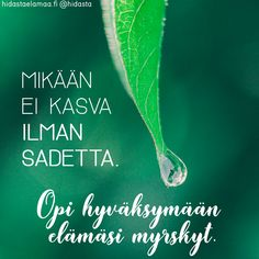 Mitä kohtaamasi myrskyt ovat sinulle opettaneet?💚 Take What You Need, Lessons Learned In Life, You Are Strong, Peace Of Mind, Wise Words, Cool Pictures, Motivational Quotes, Poems, Self