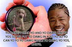 Xzibit, Yo Dawg (Yo-yo)