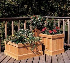 Trio of Cedar Garden Planters Cedar Planters, Outdoor Planters, Garden Planters, Outdoor Gardens, Planter Boxes, Planter Ideas, Rustic Gardens, Container Garden, Outdoor Decor
