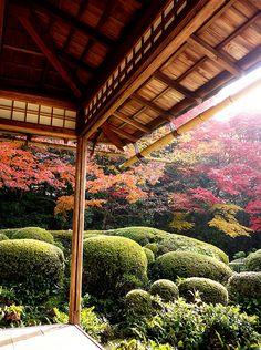 Shisen-do #japan #kyoto
