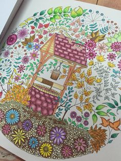 1st finished piece coloured by me from Johanna Basford Secret Garden book.
