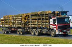 Stock Photo:   logging truck