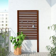 IKEA ÄPPLARÖ Wall panel, outdoor Brown stained cm For added durability and so you can enjoy the natural expression of the wood, the furniture has . Acacia, Outdoor Walls, Outdoor Living, Outdoor Wall Panels, Exterior Wall Panels, Indoor Outdoor, Teak, Wood Supply, Recycled Wood