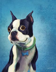 Boston Terrier by Jackie Sullivan