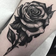 Black Rose                                                                                                                                                     Mais Linda demais