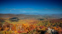 Skyline Drive in Virginia offers some of the best views of the fall foliage in the entire region — but you won't be the only one out on the roads. Virginia Fall, Shenandoah National Park, The Time Is Now, Blue Ridge Mountains, Appalachian Trail, Nice View, Roads, Waterfall, National Parks