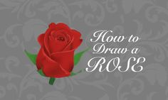 Learn how to draw a flower, in particular learn how to draw and colour an absolutely stunning Rose using digital or traditional technique! Beautiful Rose Drawing, Beautiful Roses, Learn To Draw, Peonies, Floral Paintings, Drawing Tutorials, Learning, Absolutely Stunning, Drawings