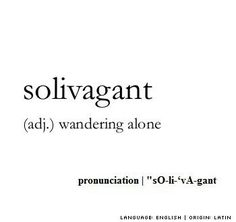 Solivagant - Introverts