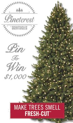 Enter for a chance to win $1,000 as well as other prizes including a Balsam Hill Christmas Tree! ENTER NOW