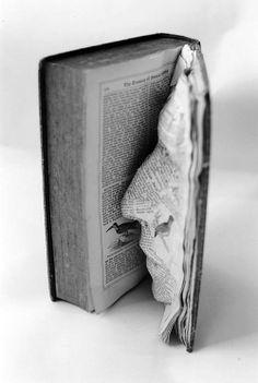 «Ogni libro ha una storia da raccontare, una funzione da svolgere, ma il valore di un libro va ben oltre le semplici parole stampate…» Le possibilità che i libri offrono come medium artistico sono molteplici, alcune soluzioni sono più semplici altre vere opere d'arte, di tecnica e di ingegno. Ci sono artisti che ricavano dai libri scenari e paesaggi incantati, altri installazioni urbane o arredamento di design.  Ancora una Felice giornata, tra gli amati libri, a Tutti…