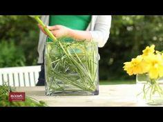 DIY: Sommerblüten geschickt gesteckt im Natur-Look - YouTube