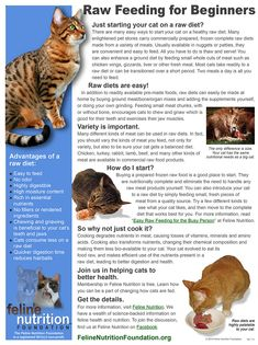 The One Page Guides in Feline Nutrition are convenient communication tools to help you to change how people think about feeding cats.