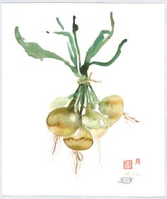 Bunch of onions, Original watercolor painting, Kitchen art, Vegetable artwork, 15X18, Brown, Green