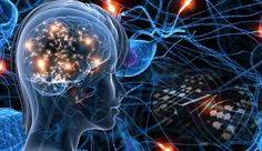 So what would you think if I told you that your thoughts have an impact on your very neurology and that you can hardwire your brain to develop your abilities? If you're like most people, you leave ...