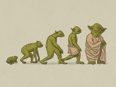 The evolution of Yoda…