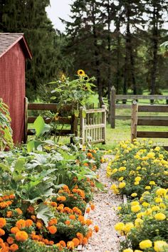 "These 25 country quotes about ""country living"" makes me want to go for a walk in the woods! The more hectic our lives become, the more I long for nature. Country Farm, Country Life, Country Living, Future Farms, Garden Cottage, Farm Cottage, Cottage Style, Farms Living, Plantation"