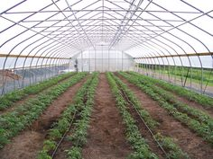 High Tunnel Greenhouse at the Center For Discovery- Harris, NY