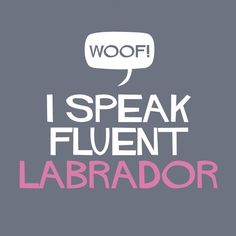 I Speak Fluent Labrador