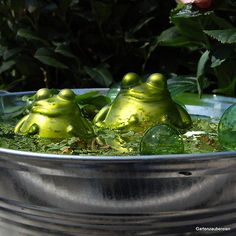 Schwimmfrosch mit Kind, Miniteich, Schwimmkugel, Frosch, Teich, Garten