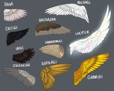 Now...think about this for a moment. Think about the wing span that Cas has when we first meet him in comparison to the way they are shown here. Now look at Luci's yet Michael, who is an Arcangel, and supposed to be stronger than Luci ...his wings are smaller. And what's the color distinction?