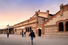 Baskets endless light // CINETECA. MADRID MATADERO // Churtichaga + QUADRA-SALCEDO