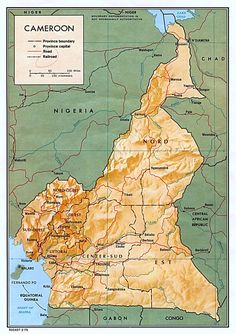 22 Best Heritage: Africa Cameroon/Congo images   West africa, Africa ...