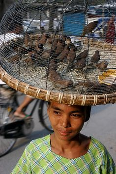 Carrying birds in a cage on head.
